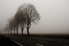 mgła Obrazy Stock