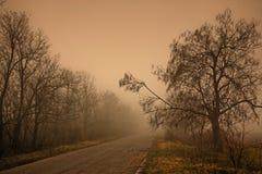 mgła. Obraz Stock