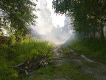 mgła. Fotografia Stock