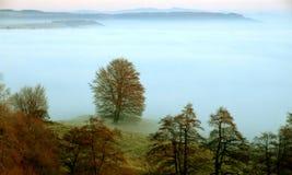 Mgławy krajobraz Fotografia Stock