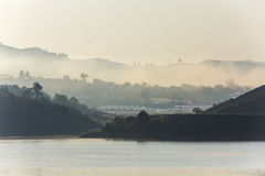 Mgła, góra, sosnowy las Obraz Stock