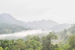 Mgła na górach Obraz Stock