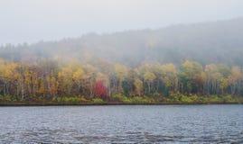 Mgła na jeziorze podczas jesieni przy Acadia parkiem narodowym obraz royalty free
