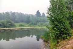 Mgła nad lasu jezioro fotografia royalty free