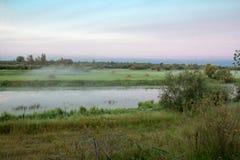 Mgła nad polem Zdjęcia Royalty Free