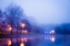 mgła nad stawem Fotografia Royalty Free