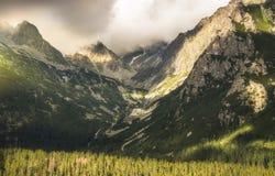 mgłowa krajobrazowa góra obrazy stock