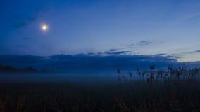 Mgłowa moonlit noc Obraz Stock