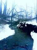 Mgłowa rzeka Obraz Royalty Free