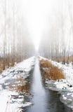 mgłowa zatoczki zima Fotografia Stock
