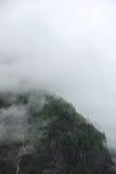 Mgłowe chmury wzrasta od wysokogórskiego halnego lasu Obrazy Stock
