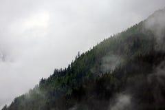 Mgłowe chmury wzrasta od wysokogórskiego halnego lasu Fotografia Stock