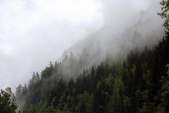 Mgłowe chmury wzrasta od wysokogórskiego halnego lasu Zdjęcia Stock