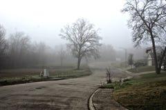 mgłowy Obrazy Stock