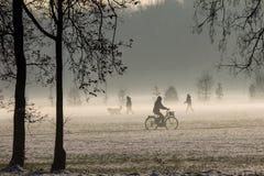 Mgłowy krajobraz Obraz Stock