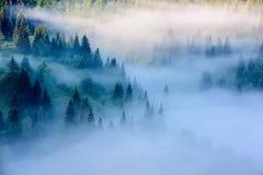 Mgłowy krajobraz w górach Obrazy Stock