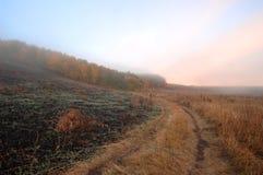 mgłowy krajobrazowy drogowy wiejski Zdjęcia Royalty Free