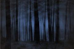 mgłowy las