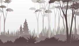 Mgłowy lasowy widok, wektorowa ilustracja Obraz Stock