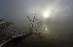 mgłowy ranek Fotografia Stock