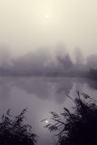 Mgłowy ranek na rzece Fotografia Stock