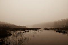 Mgłowy ranek przy furta stawem Obraz Royalty Free