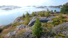 Mgłowy ranek w archipelagu Sztokholm fotografia stock