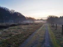 Mgłowy ranek w polach Fotografia Royalty Free