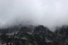 Mgłowy stan washington krajobraz Zdjęcia Royalty Free