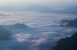 Mgła przy Phu Chi Fa, Tajlandia Obraz Stock