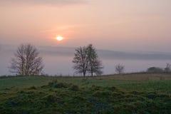 mgła ranek Fotografia Royalty Free