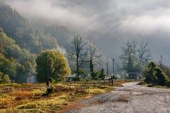 mgła rano jesieni
