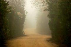 mgła toru Obrazy Stock