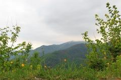 Mgła w górach zdjęcia stock
