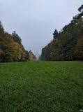 Mgła w parku Obraz Royalty Free
