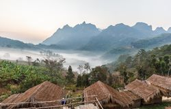 mgła w ranku Fotografia Royalty Free