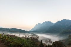 mgła w ranku Obrazy Royalty Free