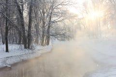 Mgła w zimie Zdjęcia Stock