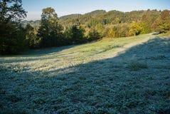 mgły domu krajobrazu ranek sylwetki drzewa Obrazy Royalty Free