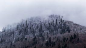 mgły góra Fotografia Stock