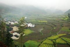 mgły ranek wioska Obrazy Stock
