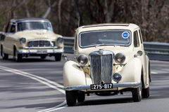 1949 MG Y Saloon. Adelaide, Australia - September 25, 2016: Vintage 1949 MG Y Saloon driving on country roads near the town of Birdwood, South Australia royalty free stock image