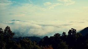 Mgieł rolki przez doliny Wielkie Smokey góry w Pólnocna Karolina zbiory