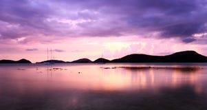 mgiełek purpury Zdjęcie Stock