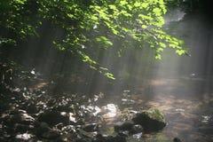 mgiełki rzeka Zdjęcie Royalty Free