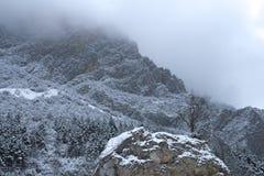 Mglista góra w wonter Obraz Stock