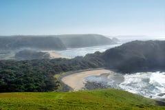 Mglista plaża w ranku świetle Obraz Stock