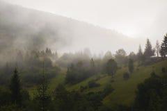 Mgliste góry zimne obraz stock