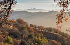 Mglistej góry jesieni krajobraz z Kolorowym lasem zdjęcie royalty free