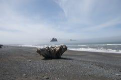 Mglistej góry wyspa z Driftwood przy kantor plażą Olimpijski park narodowy, WA fotografia royalty free